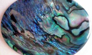 Перламутр – удивительный переливающийся камень